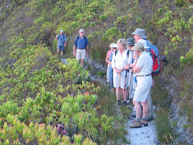 A group of walkers in Fernkloof