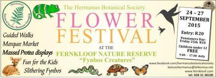 Whale Talk flier flower festival