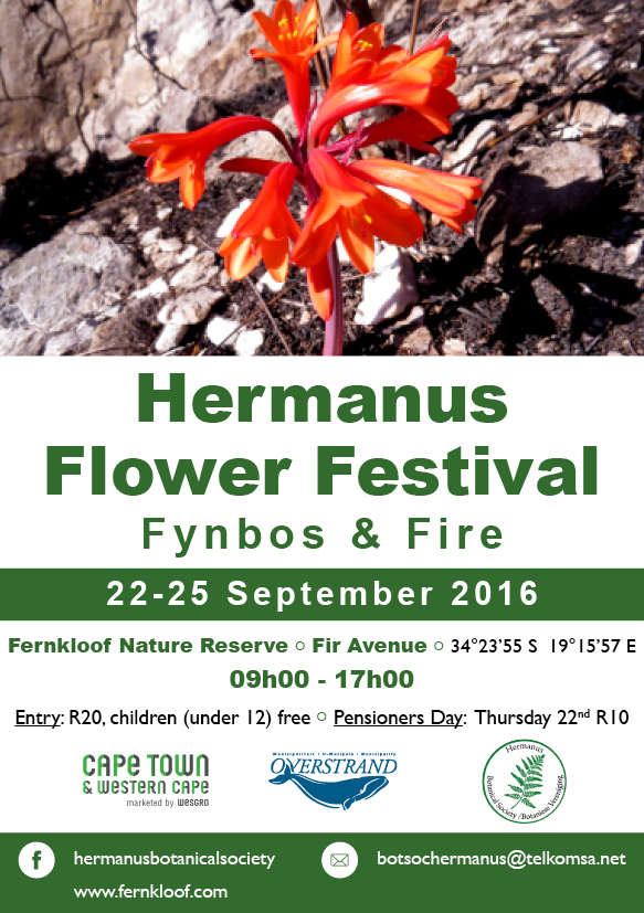 HERBS | The Newsletter of the Hermanus Botanical Society | Page 15