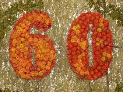 Celebrating 60 years!
