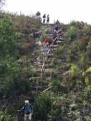 Frank on the ladder descent