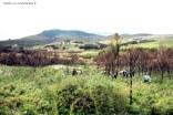 Camphill 4